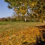 Autumn 1140 x 408 - 13