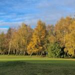 Autumn 1140 x 600 - 15